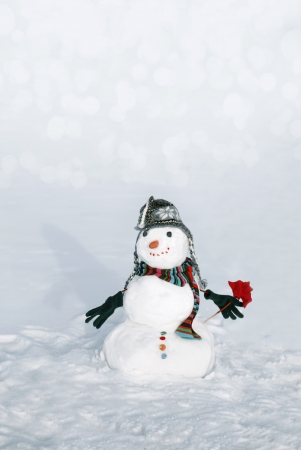 Snowmen with flower
