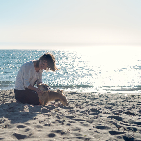 pet  animal: woman playing with her dog on the beach during sunrise