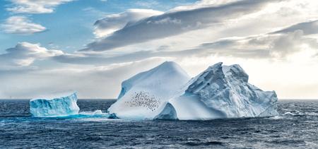 Iceberg in Antarctica sea