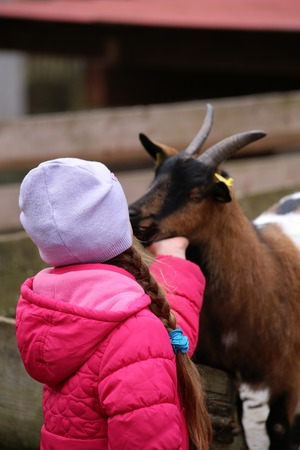a little girl with a goat in the Zoo