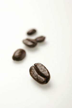 long beans: Close-up of coffee beans on white background