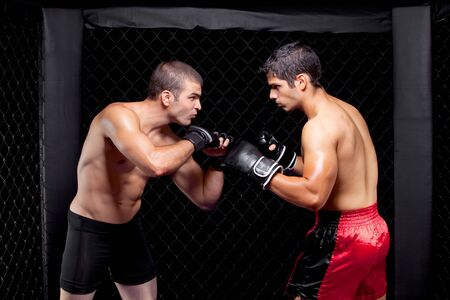 Mixed martial artists before a fight photo