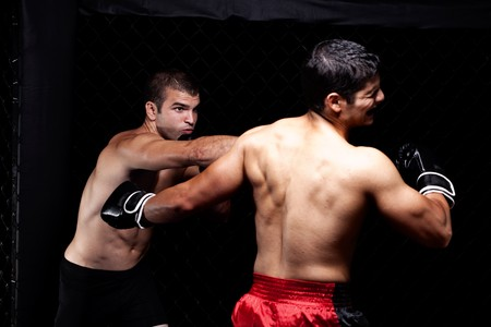 gabbie: Artisti marziali misti combattimenti - punzonatura