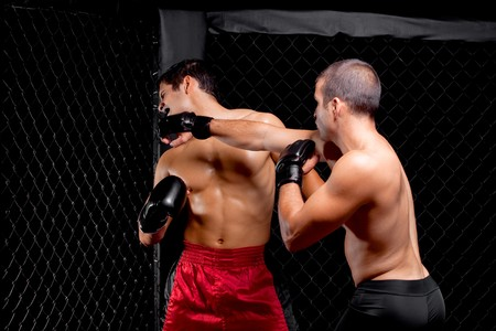 fighters: Mixed martial artists fighting - punching