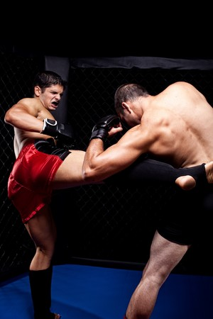 martial artist: Mixed martial artists fighting - kicking