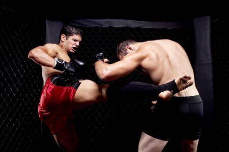 kick: Mixed martial artists fighting - kicking