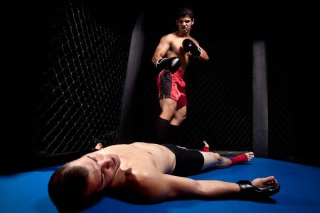 Mixed martial artists fighting - knock out photo