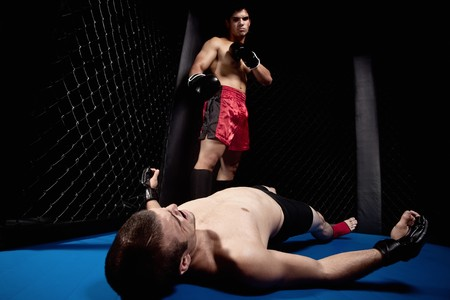 Mixed martial artists fighting - knock out Stock Photo - 7908423