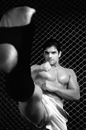 Mixed martial artist posed in front of chain link Stock Photo - 7961915