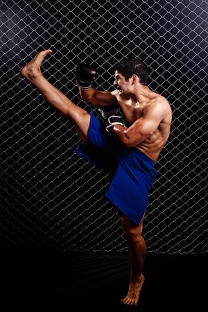 kick boxer: Mixed martial artist posed in front of chain link