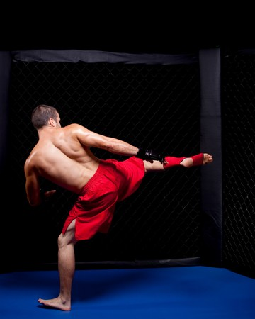 martial artist: Mixed martial artist before a fight