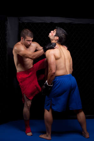 male boxer: Mixed martial artists fighting