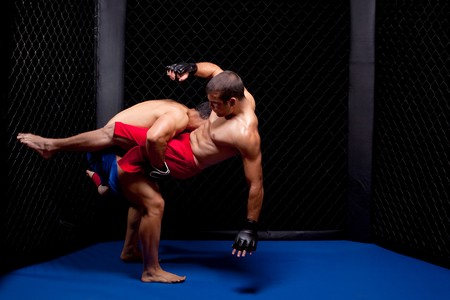 Mixed martial artists fighting Stock Photo - 8156978
