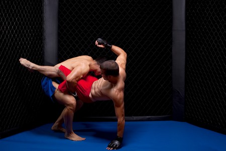 cage: Mixed martial artists fighting