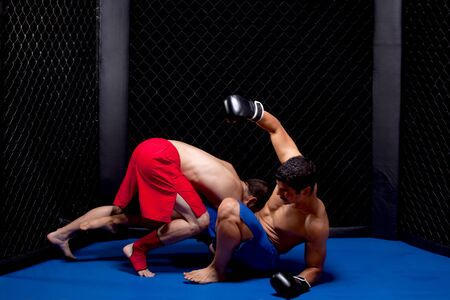 Mixed martial artists fighting photo
