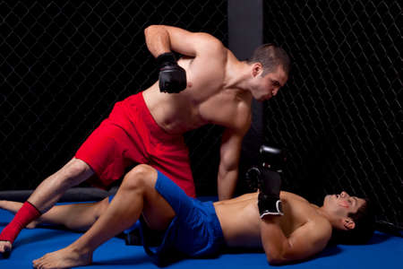 Mixed martial artists fighting Stock Photo - 8156983