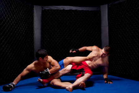 mixed martial arts: Artistas marciales mixtos combates