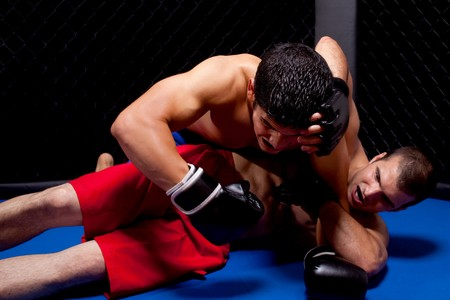 martial artist: Mixed martial artists fighting