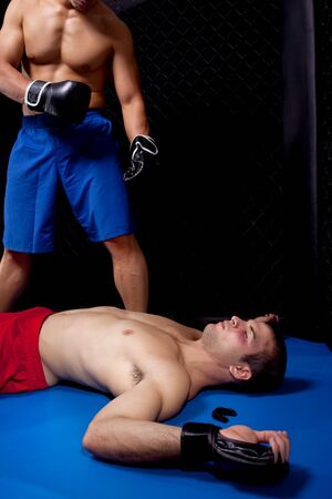 knock out: Mixed martial artists fighting