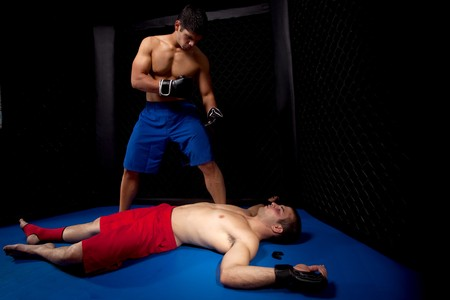 boxer: Mixed martial artists fighting