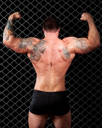 back link: Bodybuilder