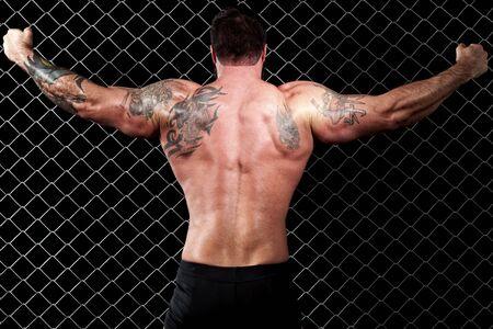 hombres musculosos: Culturista  Foto de archivo