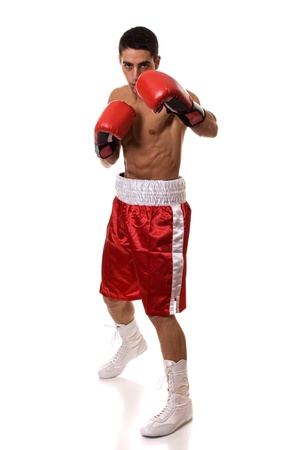 Boxer Banco de Imagens
