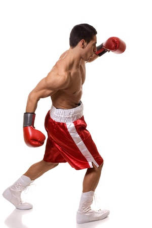 boxer: Boxeador