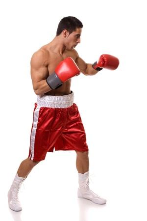 guantes de boxeo: Boxeador