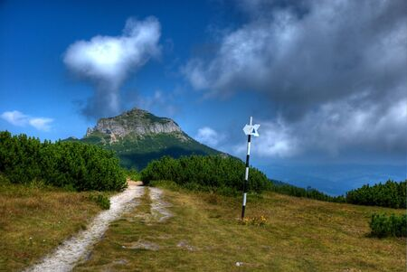 Track to Toaca peak, Ceahlau mountains, Romania. HDR image