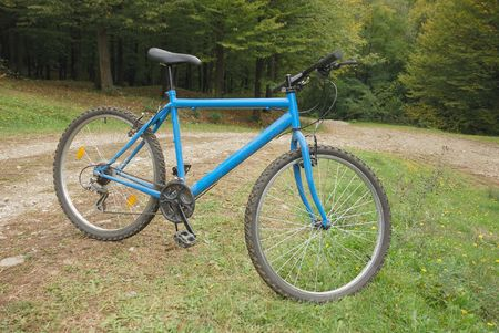 blue mountain bike resting in green environment