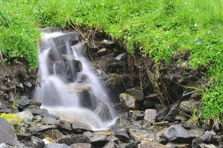 the spring of fresh water surrounded green fresh vegetation Stock Photo - 7813136