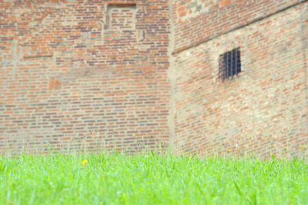spring background with green grass and a blurred brick wall