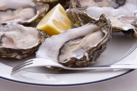 Half dozen oysters, lemon and fork on a plate