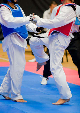 Martial arts competitors in action Standard-Bild