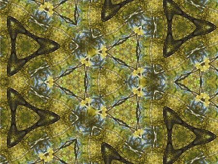 Fall colors kaleidoscope