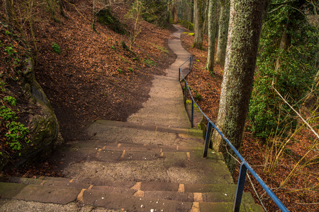 Stairs path in the forest for hicking.A staircase path in a densely wooded area in Mont-Sainte-Odile,Strasbourg,France. Standard-Bild