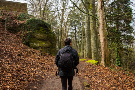 Young Man,Student hiking in forest.Man hiker back looking up enjoying nature during a trekking trip. Back of a young man outdoors in nature on a hiker path in forest.