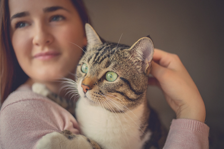 Pets Care.Young woman holding cat home.Cute cat in woman hands.Animal Love.Cat lover.Friendship. Standard-Bild