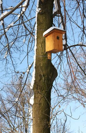 Bird house on a tree in winter time photo