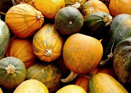 Pumpkins detail background Stock Photo - 11110685