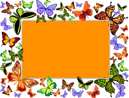 many coloured: Butterflies frame illustration Stock Photo