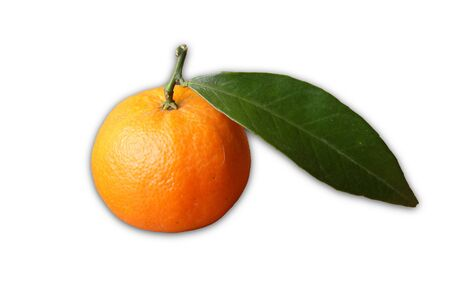 clementine: Clementine fruit over white
