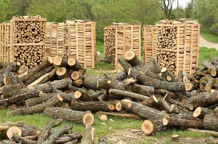 Fire wood pallets photo