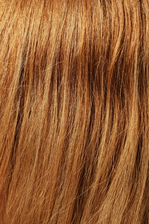 Brown hair detail Stock Photo - 11714008