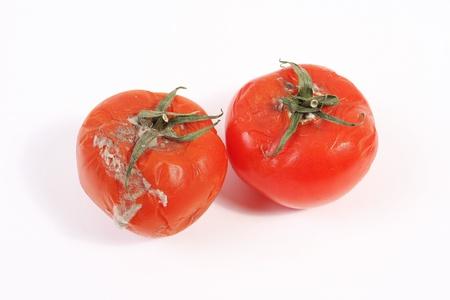Moldy rotten tomatoes Stock Photo