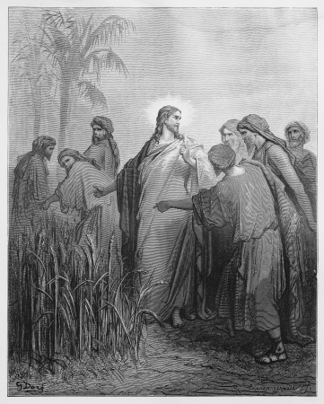disciples: Jesus tells the disciples that they may pick corn - Picture from The Holy Scriptures, Old and New Testaments books collection published in 1885, Stuttgart-Germany. Drawings by Gustave Dore.