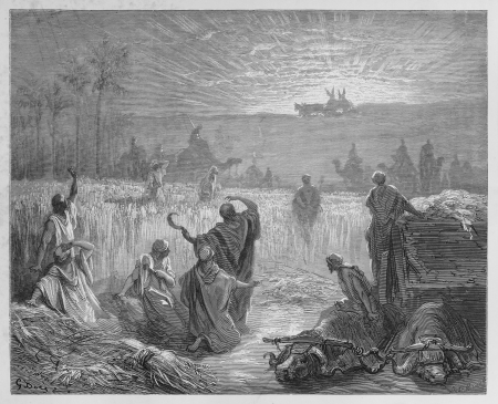 testaments: Return of the Ark - Picture from The Holy Scriptures, Old and New Testaments books collection published in 1885, Stuttgart-Germany. Drawings by Gustave Dore.  Editorial