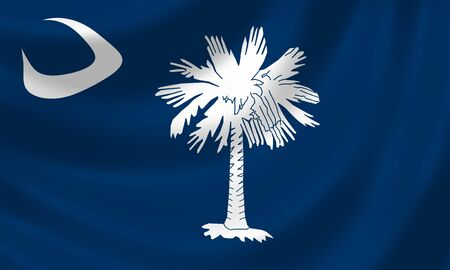 Flag of South Carolina American State waving in the wind detail  photo