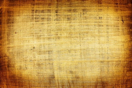 papyrus: Abstract papyrus background
